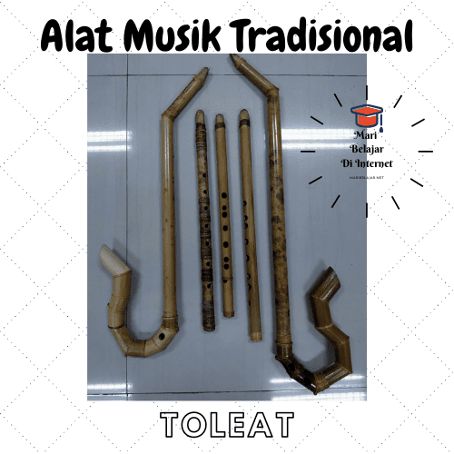 Alat Musik Tradisional Toleat